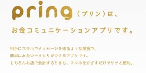完全手数料無料の電子マネー: Pring(プリン)の使い方。Pringなら銀行払出しが無料!